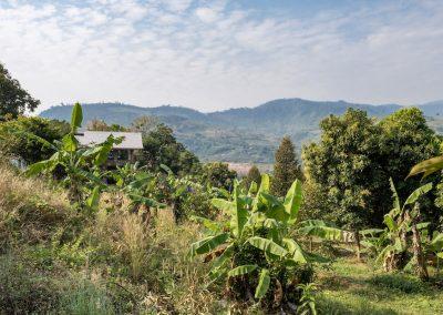 Payana Farm Kampot